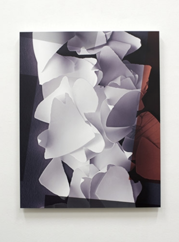 UNTITLED 2013 - pigment transfer print and acrylic on aluminium - 75 x 93,5cm